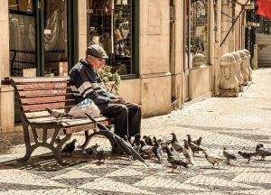 senior feeding pigeons on bench